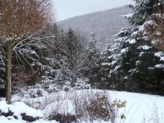 sonnenhof-wintertuin