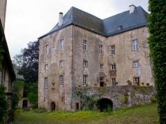 Fotos Burg Lissingen Gerolstein