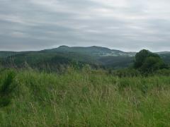14birresborn-boswandeling-berglandschap