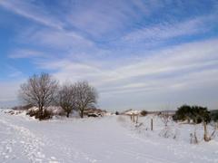winterwandeling in de Eifelgebergte