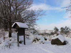 Wandern Winterlandschaft